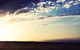 Обои поле, небо, облака, пейзаж, природа, горизонт