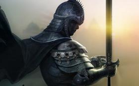 Картинка взгляд, меч, доспехи, воин, рыцарь, плащь