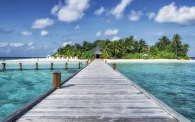 Обои песок, море, пляж, лето, вода, пейзаж, природа