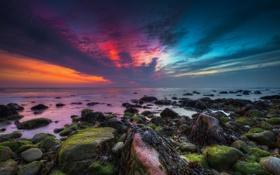 Картинка пейзаж, природа, рассвет, берег