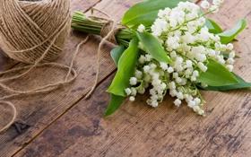 Обои цветы, букет, веревка, ландыши