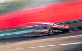 Обои машина, гонка, скорость, движение