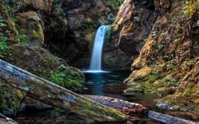 Обои горы, река, водопад, мох, бревна, Pamela Winders