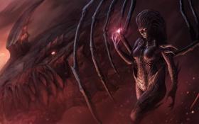 Картинка starcraft, art, Deathwing, Kerrigan