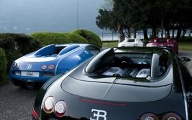 Картинка озеро, Bugatti, Veyron, red, white, black, blue