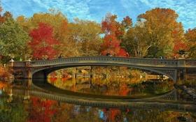 Обои осень, небо, деревья, пейзаж, мост, Нью-Йорк, США