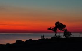 Обои море, небо, дерево, берег, ограда, силуэт, зарево