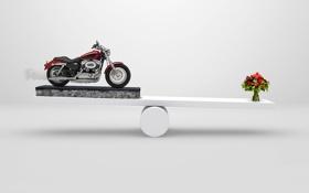 Обои цветы, креатив, букет, мотоцикл, тюльпаны, белизна, перевес