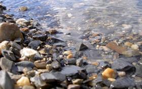 Обои вода, макро, галька, берег, Камни, камушки, камешки
