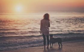 Обои девушка, собака, море, закат, волны