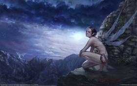 Картинка девушка, тучи, скалы, дракон, крылья, фея, тату