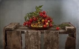 Обои фон, ящик, помидоры
