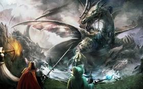 Обои дракон, trine, пати