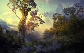 Обои лес, джунгли, пандора