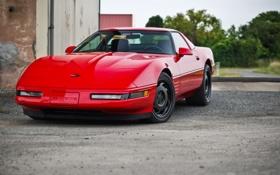 Обои красный, corvette, шевроле, chevrolet, корвет, zr 1