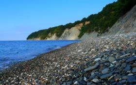 Обои море, пляж, камни, кусты
