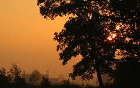 Обои пейзаж, закат, город, вечер, sunlight