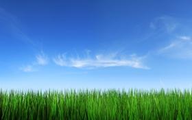 Обои облака, трава, небо, природа, фото, фон, пейзажи