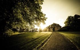 Картинка пейзаж, дом, деревья, дорога