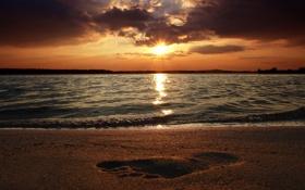 Обои песок, пляж, след, море