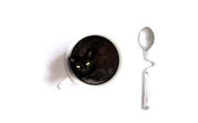 Обои ложечка, белый, чашка, содержимое, фон, кошка
