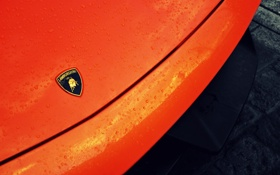 Обои авто, оранжевый, капот, суперкар, Superleggera, ламборджини, Lambo