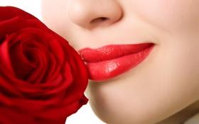 Картинка цветок, лицо, улыбка, обои, роза, губы, носик