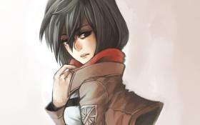 Обои взгляд, девушка, арт, куртка, Mikasa Ackerman, Атака Титанов