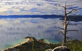 Обои небо, облака, озеро, отражение, дерево, горизонт, мыс