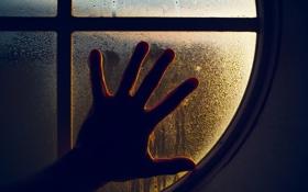 Обои капли, окно, пальцы, стекло, Рука, ладонь