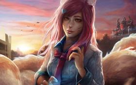 Обои девушка, лиса, рубашка, ушки, League of Legends, ahri, Nine-Tailed Fox
