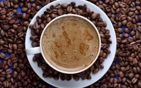 Обои кофейные зерна, кофе, пенка, coffee beans