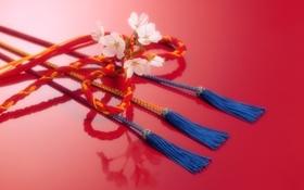 Обои цветок, веревка, Япония, шнур, тесьма