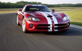 Обои Красный, Полосы, Машина, Капот, Dodge, viper, передок