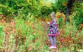 Картинка осень, природа, настроение, девочка
