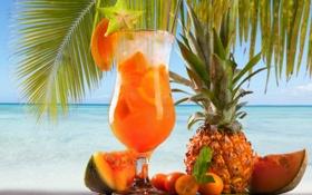Обои коктейль, дыня, пальма, ананас, апельсин, море