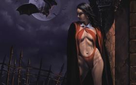 Обои девушка, ночь, арт, вампир, летучая мышь