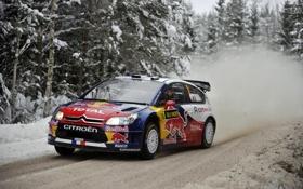 Обои Зима, Авто, Снег, Лес, Спорт, Citroen, WRC