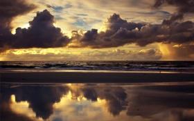 Обои море, пляж, небо, облака, чайки