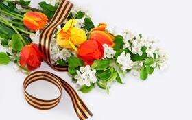 Обои Вечная память героям войны!, георгиевская, 9 мая, День Победы, ленточка, цветы
