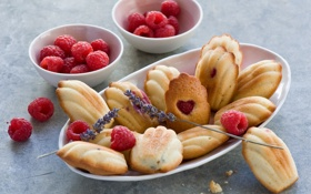 Картинка ягоды, малина, печенье, лаванда, мадлены