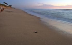 Картинка песок, море, вода, свет, огни, города, океан