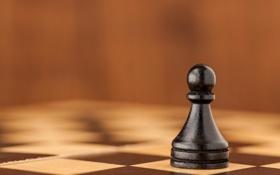 Картинка шахматы, фигура, пешка