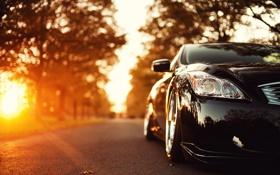 Картинка дорога, авто, осень, солнце, лучи, infiniti, cars