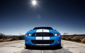 Картинка дорога, солнце, полосы, степь, Mustang, Ford, Shelby