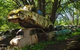 Обои машины, мох, свалка, лом