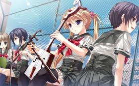 Картинка крыша, девушки, сетка, отдых, решетка, музыкальные инструменты, game cg