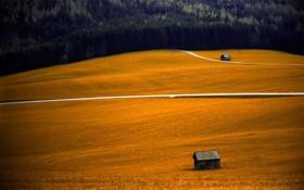 Обои поле, осень, деревья, фото, обои, пейзажи, дома