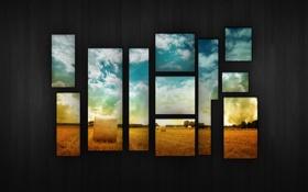 Обои сбор, небо, поле, пшеница, урожая, дерево