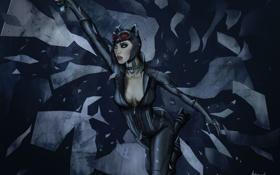 Картинка костюм, осколки, Antimad1, Batman: Arkham City Armored Edition, Catwoman, грудь, девушка